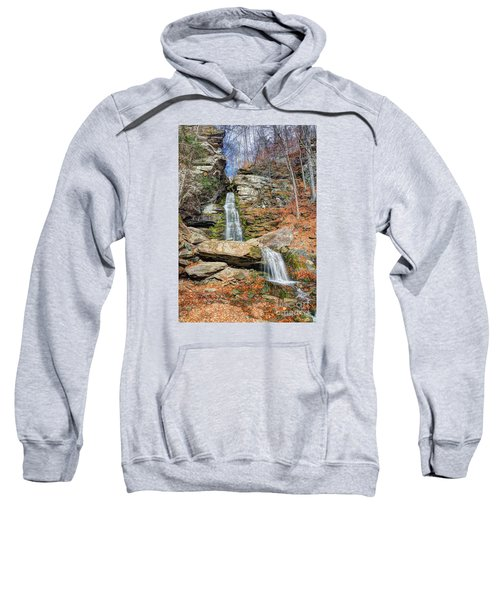 Peek A Moose Sweatshirt