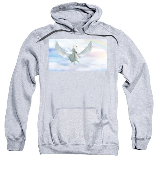 Pegasus Sweatshirt by John Edwards