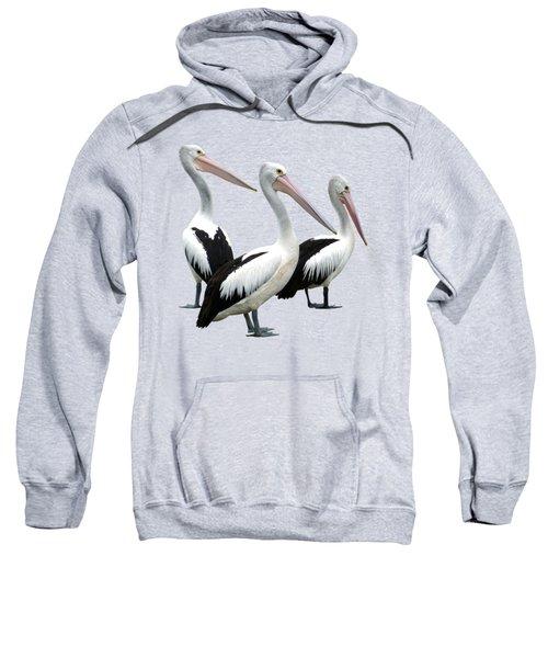 Pelican Beach Sweatshirt