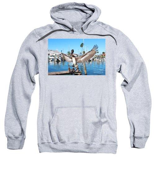 Pelican Flying In Sweatshirt