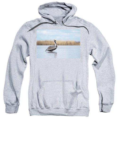 Pelican In Paradise Sweatshirt