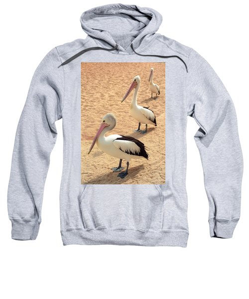 Pelicans Seriously Chillin' Sweatshirt