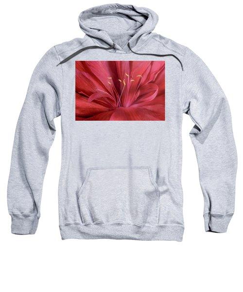 Peonia Insight Sweatshirt