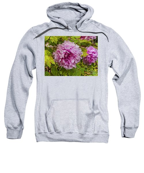 Peony Lace Sweatshirt