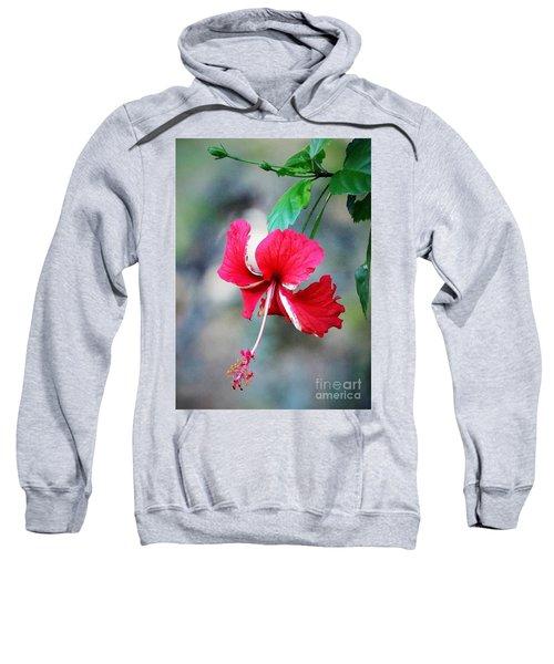 Peppermint Hibiscus Sweatshirt