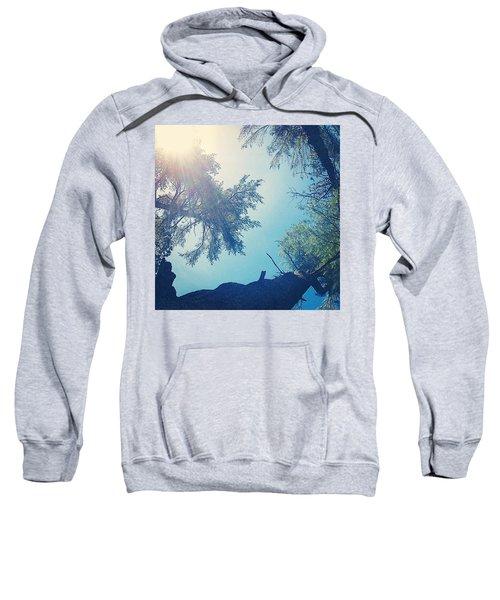Camping View Sweatshirt