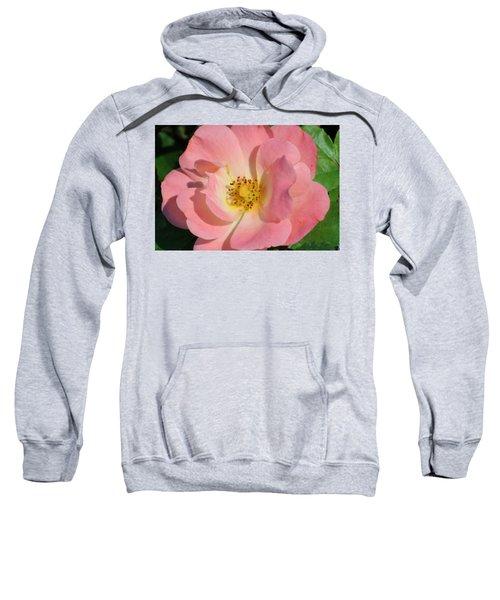 Perfectly Pink Sweatshirt