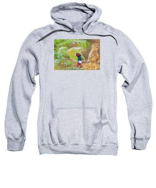 Pheasant Portrait Sweatshirt
