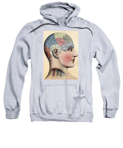 Phrenology Chart Sweatshirt