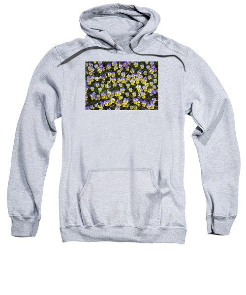 Pick Me-pansies Sweatshirt