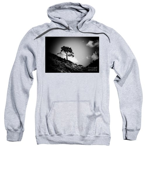 Pine At Sky Background Artmif.lv Sweatshirt