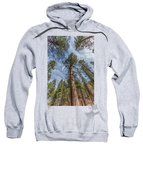 Pine Cathedral On The West Fork Sweatshirt