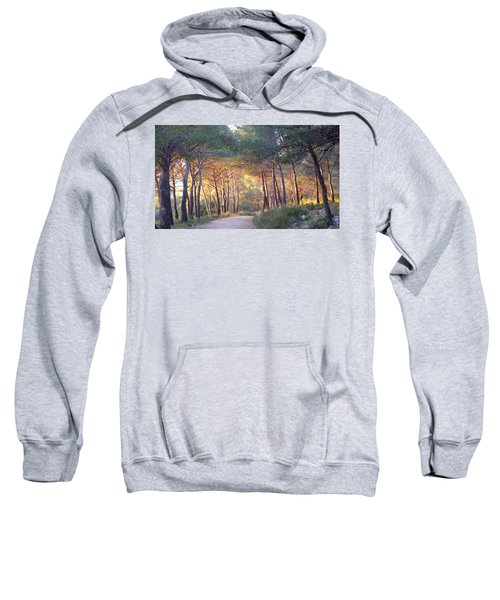 Pine Forest At Sunset Sweatshirt
