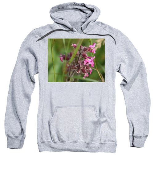 Pink Campion In August Sweatshirt