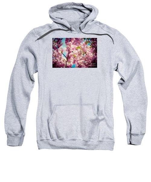 Pink Cherry Blossoms Sakura With Bee Sweatshirt