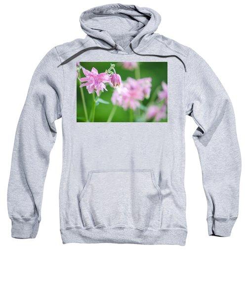 Pink Columbine Sweatshirt