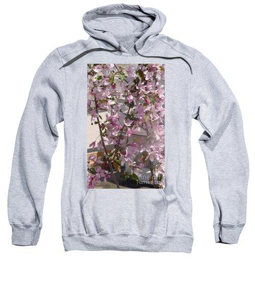 Pink Crabapple Branch Sweatshirt