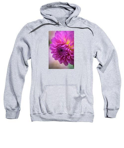 Pink Dahlia Sweatshirt