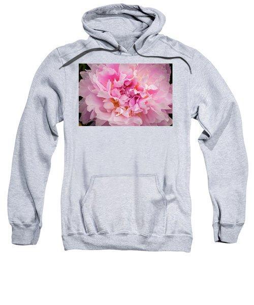 Pink Double Peony Sweatshirt