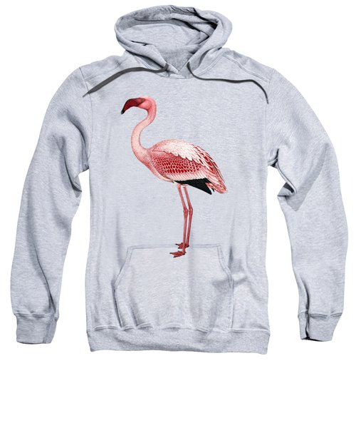 Pink Flamingo Isolated Sweatshirt