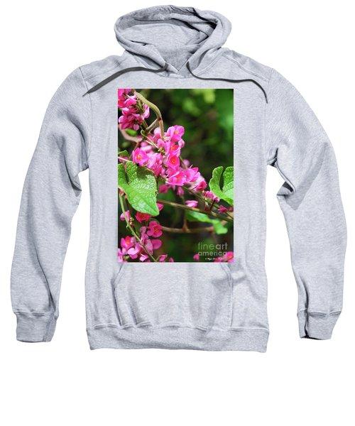 Pink Flowering Vine3 Sweatshirt
