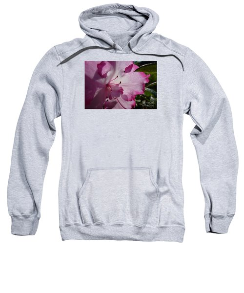 Pink Flowers 1 Sweatshirt