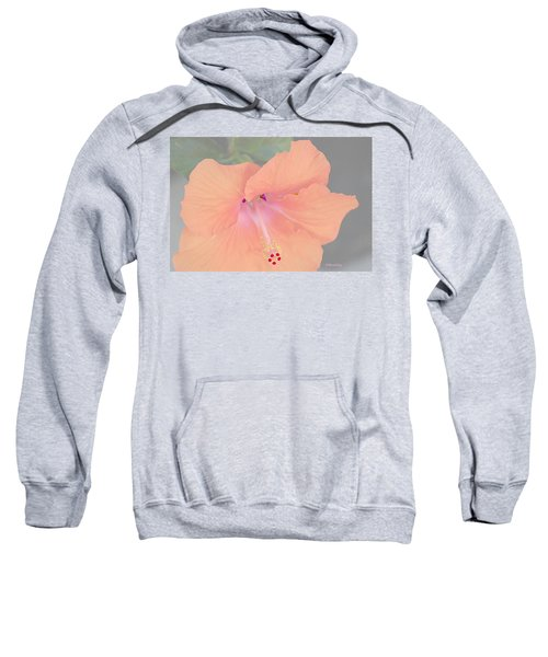 Pink Heavenly Hibiscus Sweatshirt