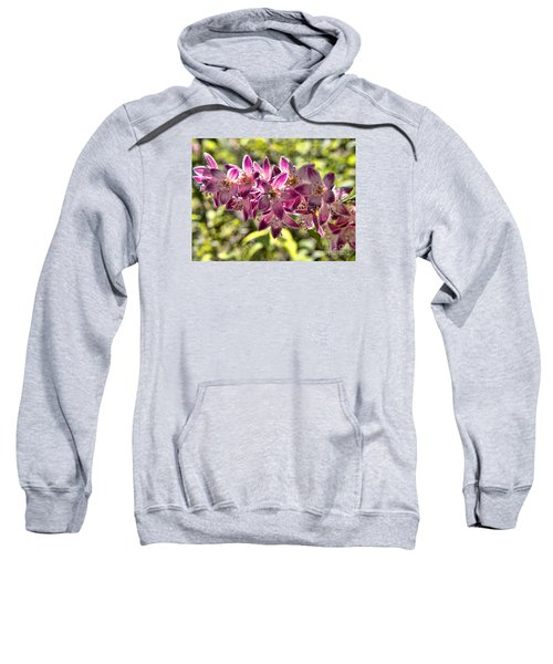 Pink Ladies In Spring Glory Sweatshirt