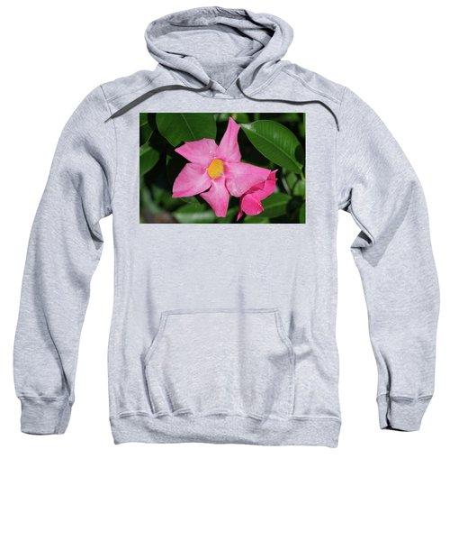 Pink Mandevilla Sweatshirt