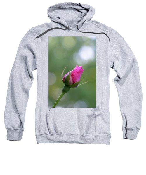 Pink Rose Bud Sweatshirt