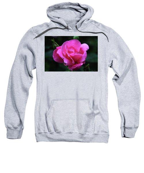 Pink Rose With Raindrops Sweatshirt