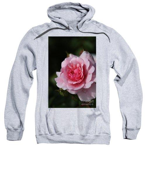Pink Shades Of Rose Sweatshirt