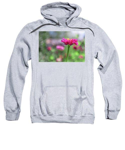 Pink Zinnia Sweatshirt