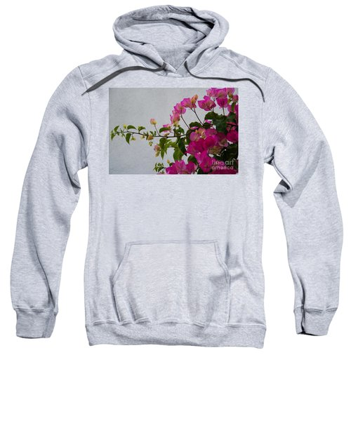 Pinks Portrait Sweatshirt