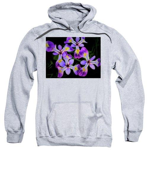 Pinwheel Purple Iris Glow Sweatshirt