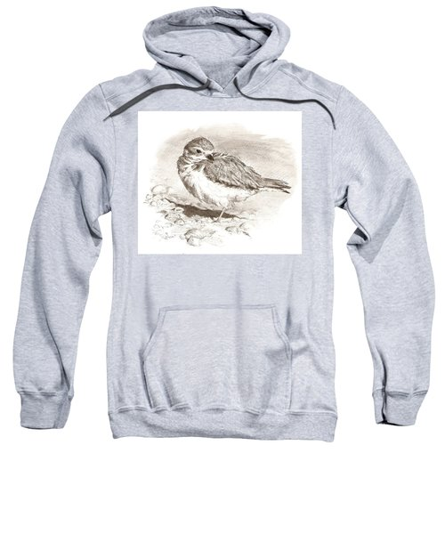 Piping Plover Sweatshirt