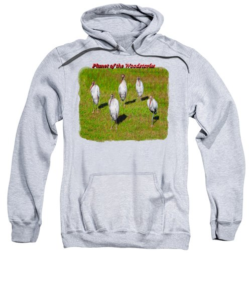 Planet Of The Woodstorks 2 Sweatshirt by John M Bailey