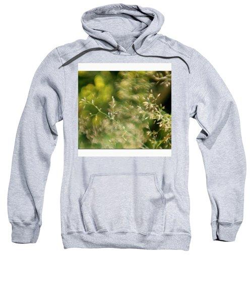 #plasticfantastic #plasticlens #bokeh Sweatshirt by Mandy Tabatt