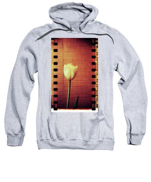 Playground #154f Sweatshirt