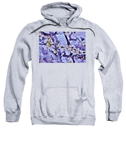 Plum Blossoms In Snow Sweatshirt