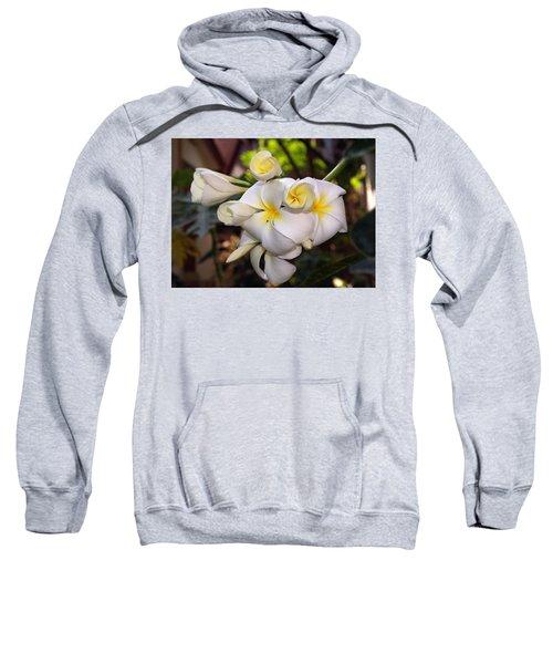 Plumeria Portrait Sweatshirt