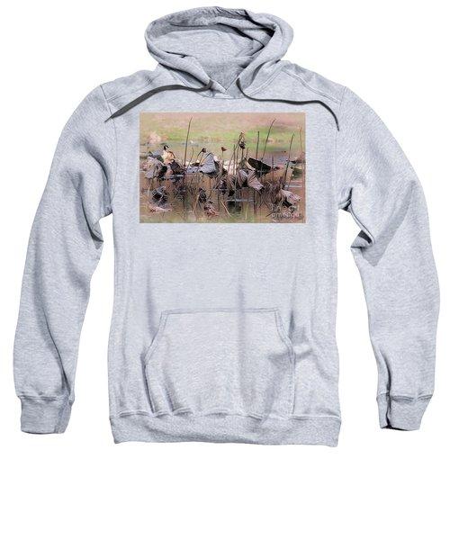 Pods At Sunset Sweatshirt