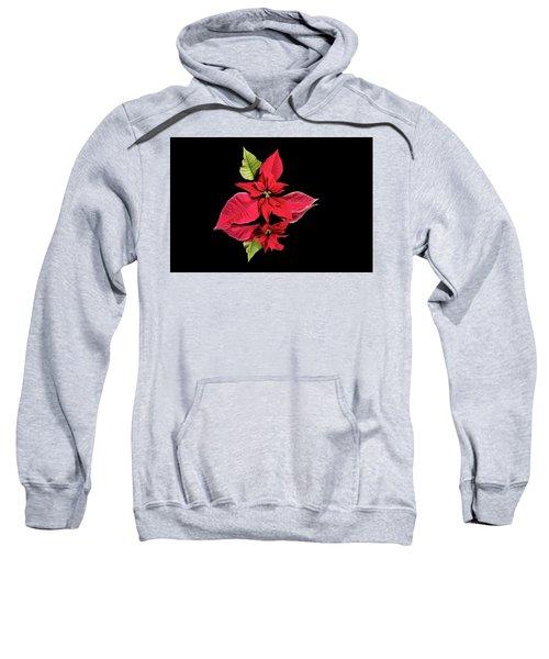 Poinsettia Reflection  Sweatshirt
