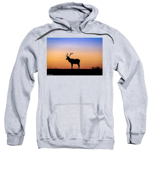 Point Reyes Elk Sweatshirt