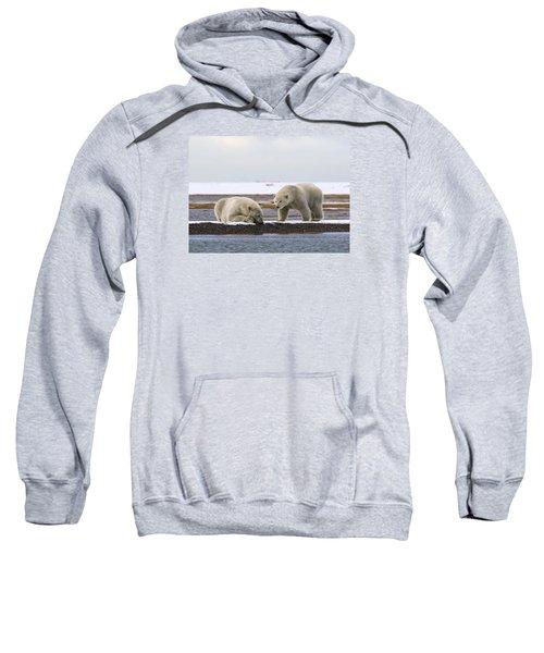 Polar Bear Zzzzzzz's Sweatshirt
