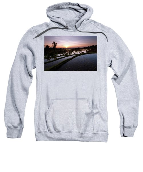 Pools Of Rice Sweatshirt