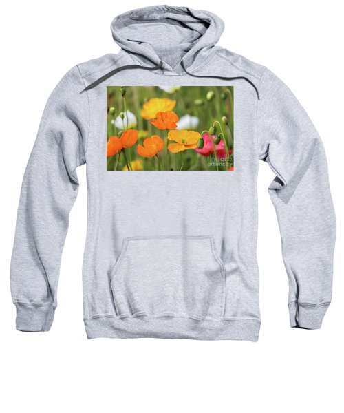 Sweatshirt featuring the photograph  Poppies 1 by Werner Padarin