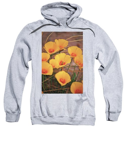 Poppies On Mount Lemmon Sweatshirt