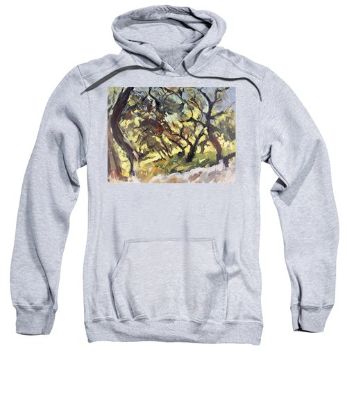 Popping Sunlight Through The Olive Grove Sweatshirt