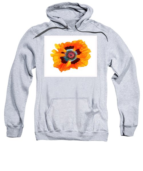 Poppy Pleasing Sweatshirt